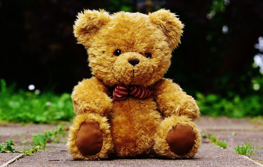 Teddy bears can help with anxiety issues