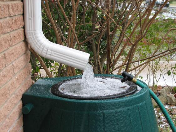 Save money at home by reharvesting rainwater