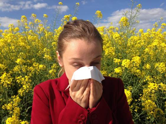 Having fevers? It may not just be allergies