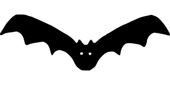 Bat gal is an easy transformation