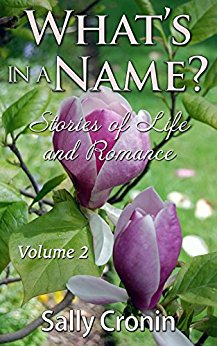 Book Cover for Stories of Life and Romance